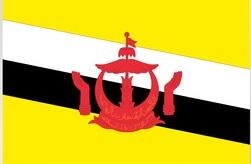 International healthcare insurance Brunei