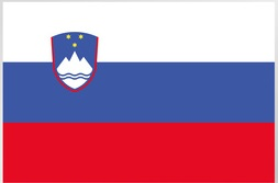 International healthcare insurance Slovenia
