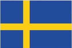 International healthcare insurance Sweden