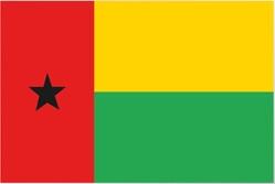 International healthcare insurance Equatorial Guinea